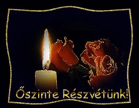 oszinte_reszvetunk_1942119_1081